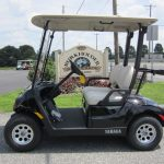 2017 Yamaha Electric Golf Cart